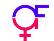 Logo für das Offenbacher Frauennetzwerk